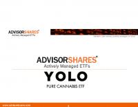 YOLO Investment Presentation